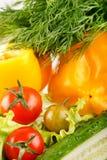 Fresh vegetables. Royalty Free Stock Photo