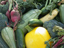 Fresh Vegetables. Organic mixed vegetables fresh from the vine at the Farmer's Market royalty free stock image