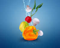 Fresh vegetables. With water splashes on blue background Royalty Free Stock Photo