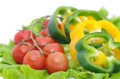 Fresh vegetables. On white background Stock Photos