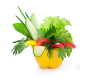 Fresh vegetables. Stock Images