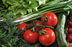 Fresh vegetables. Colorful fresh group of vegetables stock photo