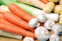 Fresh vegetables. Group of fresh organic vegetables royalty free stock photo