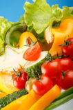 Fresh vegetables. Fresh vegetables on the table Royalty Free Stock Images