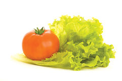 Fresh vegetables. Tomato and lettuce on the white background royalty free stock photography
