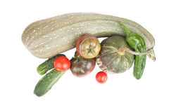 Fresh vegetables assembled from the garden isolated on white bac Stock Photography