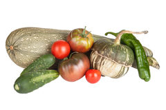 Fresh vegetables assembled from the garden isolated on white bac Royalty Free Stock Photography