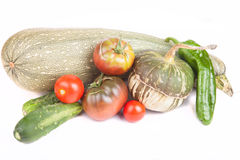 Fresh vegetables assembled from the garden on a white background Stock Image
