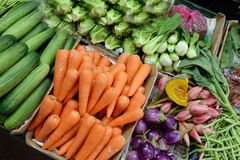 Fresh vegetables. Assortment of fresh vegetables close up Stock Photography