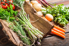 Fresh vegetables on bark Royalty Free Stock Photo