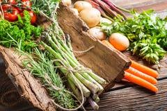 Fresh vegetables on bark Royalty Free Stock Photo