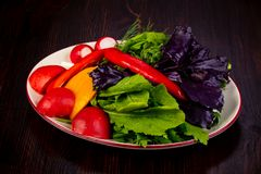 Fresh vegetables with basil. And dill Stock Image