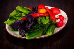 Fresh vegetables with basil. And dill stock photography