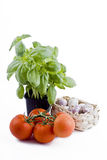 Fresh vegetables - basil, tomatoes, garlic basket Royalty Free Stock Photos