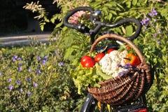 Fresh Vegetables in Basket. Fresh vegetables in wickerbasket on bicycle Stock Photo
