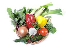 Fresh vegetables in basket Stock Image