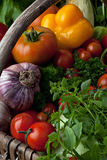 Fresh vegetables. Royalty Free Stock Images