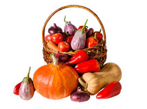 Fresh vegetables in basket isolated on white background Stock Photos