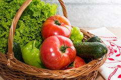 Fresh vegetables in basket. Tomato, cucumber, pepper and lettuce. Fresh vegetables covered with water drops in basket. Organic Tomatoes, cucumber, pepper and Stock Image