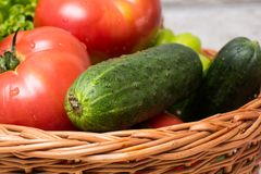 Fresh vegetables in basket. Tomato, cucumber, pepper and lettuce. Fresh vegetables covered with water drops in basket. Organic Tomatoes, cucumber, pepper and Royalty Free Stock Photo