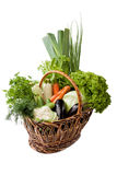 Fresh vegetables in a basket on white. A lot of fresh, different vegetables in the basket Stock Image