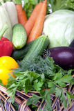 Fresh vegetables in a basket on white. A lot of fresh, different vegetables in the basket Stock Photography