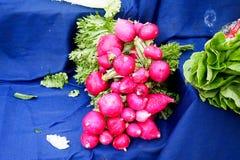 Fresh vegetables on the bazaar, celery, red radish, pepper. Fresh vegetables on the bazaar, celery, red radish Stock Images