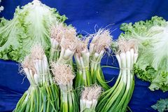 Fresh vegetables on the bazaar, celery, red radish, pepper. Fresh vegetables on the bazaar, celery, red radish Royalty Free Stock Images