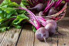 Fresh vegetables beetroot on  wooden background Stock Image