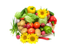 Fresh vegetables and blooming sunflowers on a white background. Horizontal photo Stock Images