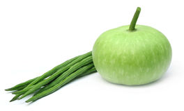 Fresh vegetables – Bottle gourd and moringa Royalty Free Stock Photo