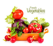 Fresh vegetables in bowl Royalty Free Stock Image