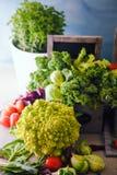 Fresh vegetables in bowls stock images