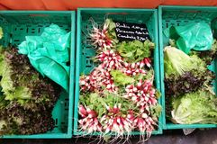 Fresh vegetables in the box, French market traditional l, France Royalty Free Stock Photos