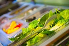 Fresh vegetables for breakfast Stock Photos