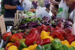 Fresh vegetables of bright colors on the counter in the vegetable market Stock Photo