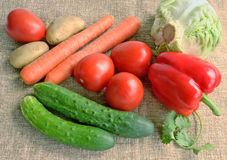 Fresh vegetables on canvas Stock Image