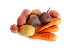 Fresh vegetables carrots, beetroots and potatoes isolated Stock Images