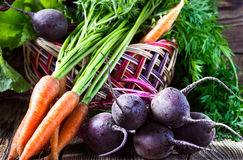 Fresh vegetables carrots, beetroots on  wooden background Royalty Free Stock Photo