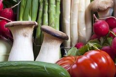 Fresh vegetables closeup Stock Photos