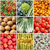 Fresh vegetables collage royalty free stock photos
