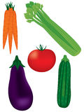 Fresh Vegetables Collection. Fresh vegetables including carrots, celery, eggplant (aubergine), tomato, zucchini (squash Royalty Free Stock Photo