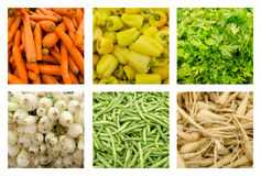 Fresh Vegetables Collection Set stock image