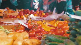 Fresh vegetables on the Counter in the Store. Showcase Vegetables. Counter with vegetables on the food market. Spontaneous market in the street in the city stock video
