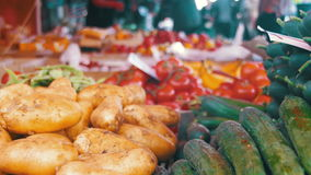 Fresh vegetables on the Counter in the Store stock footage