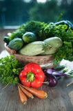 Fresh vegetables. Courgettes, cucumbers, carrots, onions, dill,. Fresh vegetables. Courgettes cucumbers carrots onions, dill, parsley Stock Images
