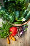Fresh vegetables. Courgettes, cucumbers, carrots, onions, dill, Stock Photos