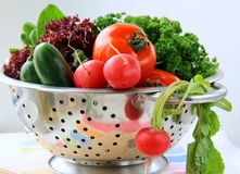 Fresh vegetables, cucumber, radish, tomato. And lettuce in a colander Stock Photography