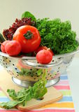 Fresh vegetables, cucumber, radish, tomato. And lettuce in a colander Stock Image