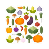 Fresh vegetables. Diet and organic food concept. Vector illustration Stock Photography